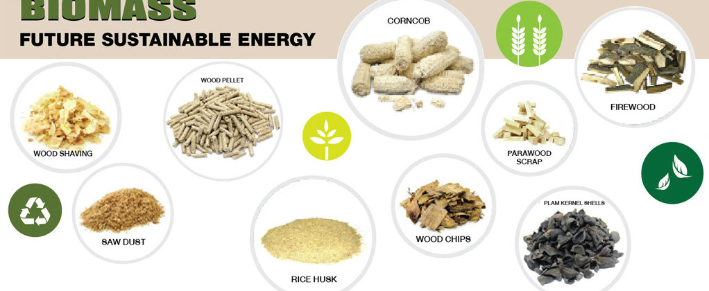 Biomass - Future Sustainable Energy