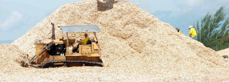 woodchip dam go
