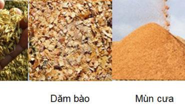 cong nghe biomass