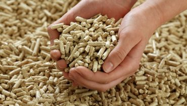 woodpellets vietnam