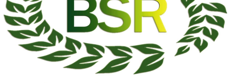logo bsr wood