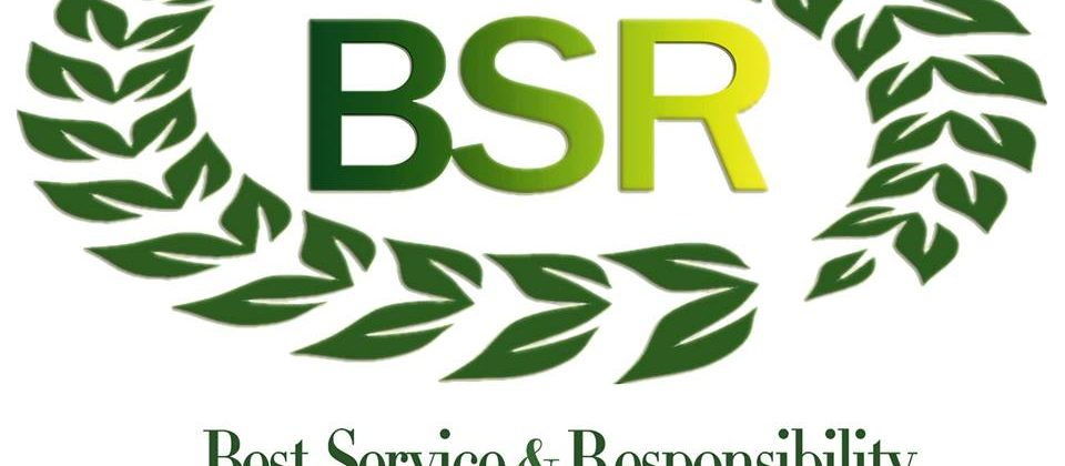 BSR WOOD CO LTD Logo