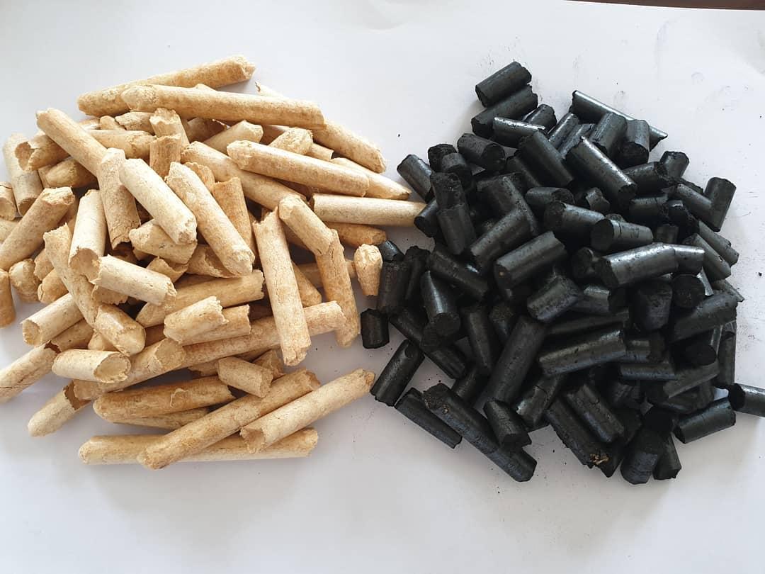 biomass expo 2020 woodpellet